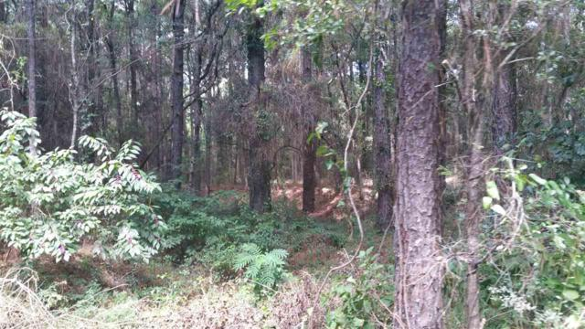 0 County Road 9, Foley, AL 36535 (MLS #274358) :: ResortQuest Real Estate