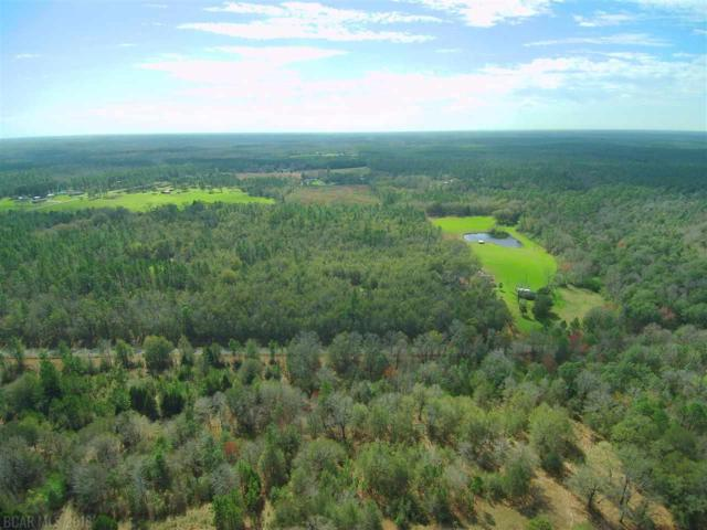 0 Old Weekley Rd, Bay Minette, AL 36507 (MLS #274498) :: ResortQuest Real Estate