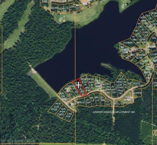 0 Lake Juniper Rd, Brewton, AL 36426 (MLS #274686) :: Elite Real Estate Solutions