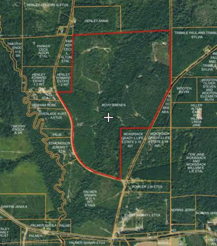 0 County Road 20, Brewton, AL 36426 (MLS #274690) :: Elite Real Estate Solutions