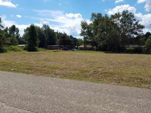 01 Terrace Street, Atmore, AL 36502 (MLS #274744) :: Jason Will Real Estate