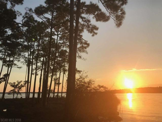 0000 Fish Trap Road, Elberta, AL 36530 (MLS #274797) :: Ashurst & Niemeyer Real Estate