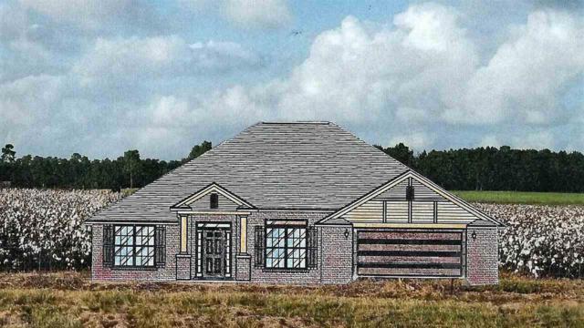 2489 Cherrywood Drive, Foley, AL 36535 (MLS #274812) :: Elite Real Estate Solutions