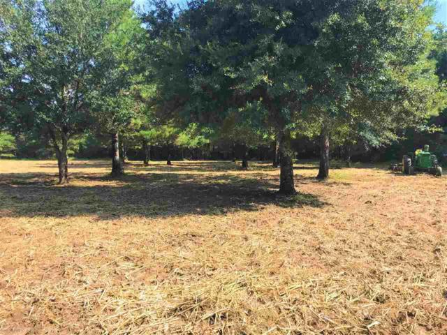46141 State Highway 225, Bay Minette, AL 36507 (MLS #274851) :: The Premiere Team