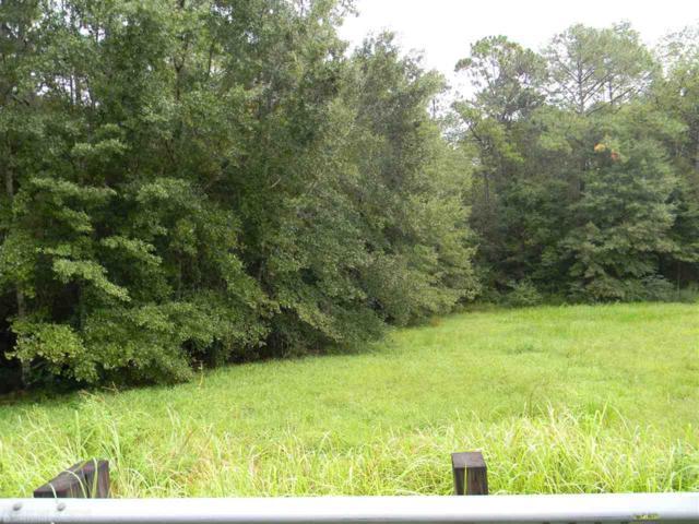 County Road 83, Elberta, AL 36530 (MLS #274871) :: Jason Will Real Estate