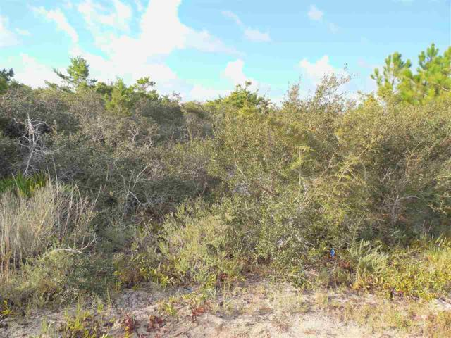 Lot 5 Bk N Driftwood Dr, Gulf Shores, AL 36542 (MLS #274923) :: The Kim and Brian Team at RE/MAX Paradise