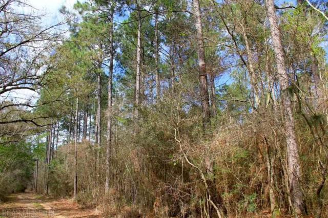 0 County Road 49, Loxley, AL 36551 (MLS #275384) :: Ashurst & Niemeyer Real Estate