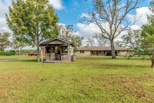 27619 County Road 20, Elberta, AL 36530 (MLS #275416) :: Jason Will Real Estate