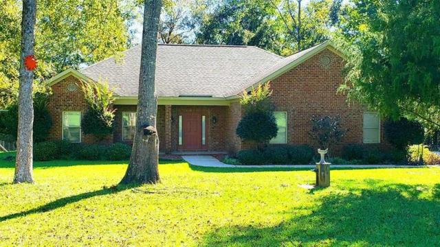 41158 State Highway 225, Bay Minette, AL 36507 (MLS #275439) :: Elite Real Estate Solutions