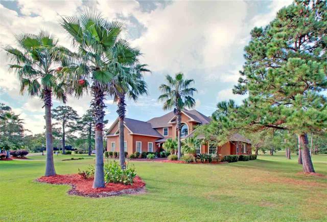 6527 E Quarry Dr, Elberta, AL 36530 (MLS #275522) :: Gulf Coast Experts Real Estate Team
