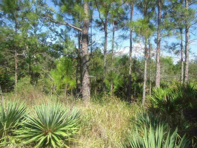 0 Dolphin Lane, Gulf Shores, AL 36542 (MLS #275537) :: Elite Real Estate Solutions
