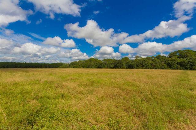 0 Breman Road, Elberta, AL 36530 (MLS #275791) :: Jason Will Real Estate