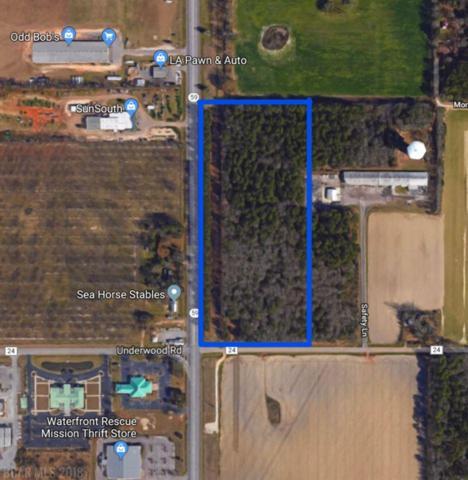 0 St Hwy 59, Foley, AL 36535 (MLS #275800) :: Elite Real Estate Solutions