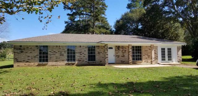 45600 Redhill Rd, Bay Minette, AL 36507 (MLS #275860) :: Jason Will Real Estate