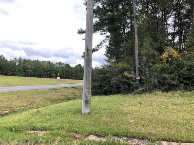 0 Highway 59, Bay Minette, AL 36507 (MLS #275889) :: Jason Will Real Estate