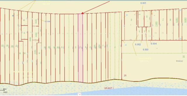 0 Fort Morgan Hwy, Gulf Shores, AL 36542 (MLS #275965) :: Jason Will Real Estate