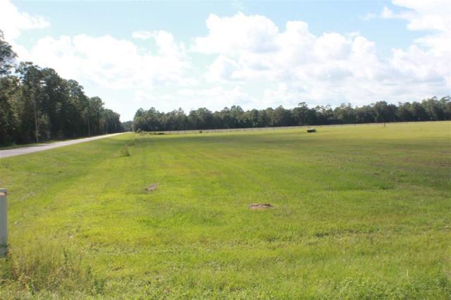 Baptist Camp Road, Elberta, AL 36530 (MLS #275995) :: Jason Will Real Estate