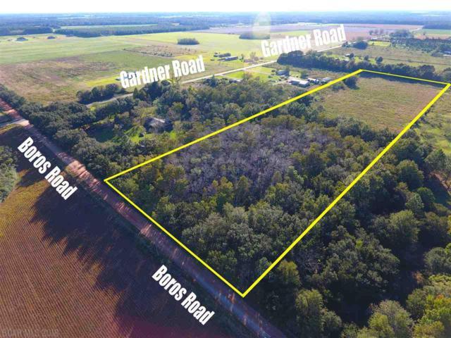 0 Boros Road, Elberta, AL 36530 (MLS #276008) :: Jason Will Real Estate
