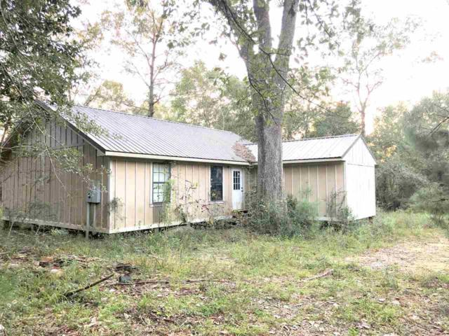 38041 Magnolia Church Rd, Bay Minette, AL 36507 (MLS #276112) :: Elite Real Estate Solutions