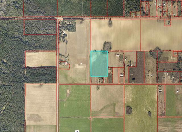 28399 Gardner Rd, Elberta, AL 36530 (MLS #276152) :: Gulf Coast Experts Real Estate Team