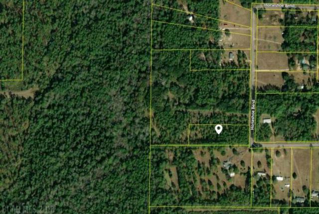 0 Horseshoe Bend Rd, Loxley, AL 36551 (MLS #276204) :: Elite Real Estate Solutions