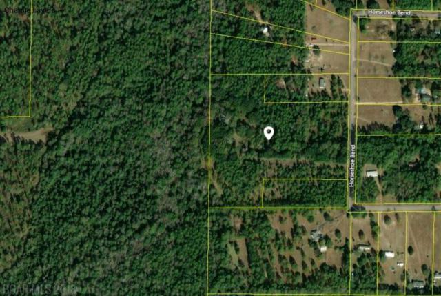 17401 Horseshoe Bend Rd, Loxley, AL 36551 (MLS #276206) :: Elite Real Estate Solutions