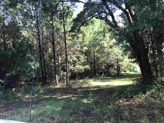 0 State Highway 225, Bay Minette, AL 36507 (MLS #276414) :: The Premiere Team