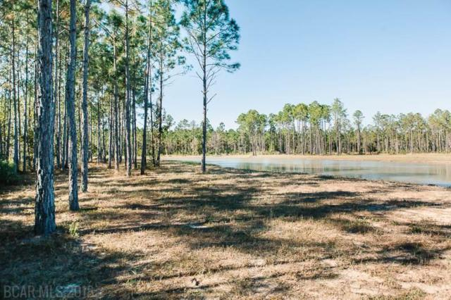 0 Burkowski Lane, Gulf Shores, AL 36542 (MLS #276425) :: Elite Real Estate Solutions