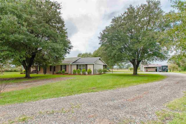 22010 N County Road 62, Robertsdale, AL 36567 (MLS #276469) :: Jason Will Real Estate