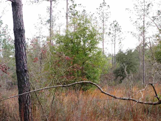 Lot 1 Osprey Lane, Robertsdale, AL 36567 (MLS #277202) :: Gulf Coast Experts Real Estate Team