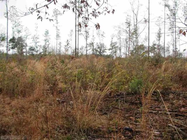 Lot 6 County Road 64, Robertsdale, AL 36567 (MLS #277207) :: Gulf Coast Experts Real Estate Team