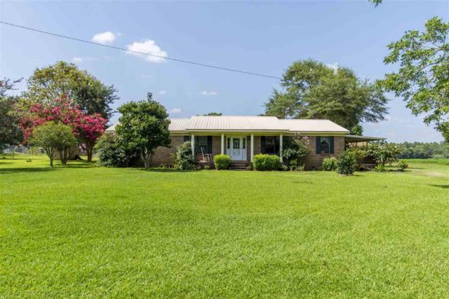12984 Springsteen Ln, Foley, AL 36535 (MLS #277218) :: Ashurst & Niemeyer Real Estate