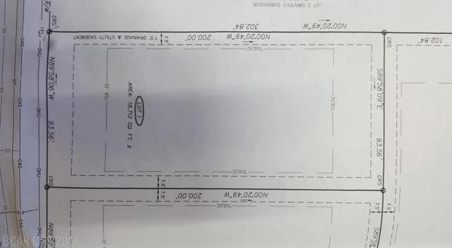 Magnolia Avenue, Foley, AL 36535 (MLS #277219) :: Ashurst & Niemeyer Real Estate