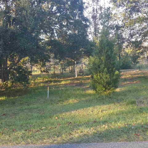 Magnolia Avenue, Foley, AL 36535 (MLS #277222) :: Ashurst & Niemeyer Real Estate