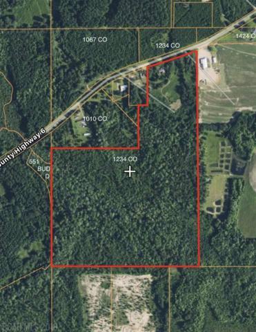 1234 County Road 7, Range, AL 36473 (MLS #277267) :: JWRE Mobile