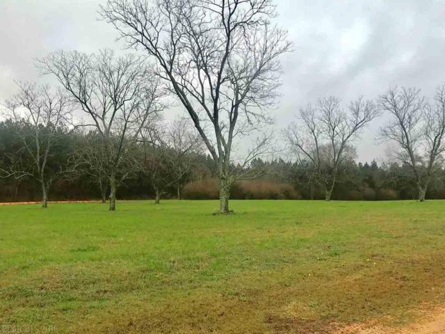 Lot 1 Pecan Orchard Road, Monroeville, AL 36460 (MLS #277875) :: Elite Real Estate Solutions
