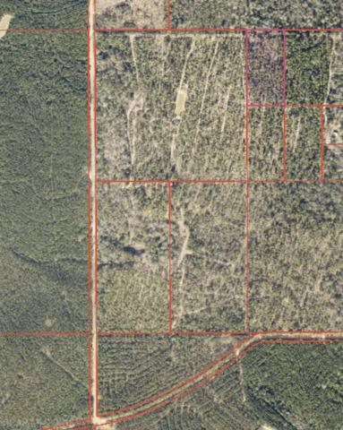 0 Truck Route 17, Robertsdale, AL 36576 (MLS #277894) :: Gulf Coast Experts Real Estate Team