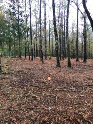 0 Jimmy Faulkner Dr, Spanish Fort, AL 36527 (MLS #277939) :: ResortQuest Real Estate