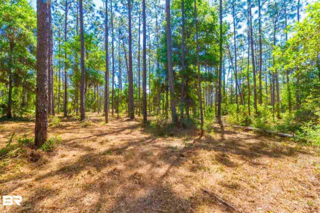 0 Scott Lane, Lillian, AL 36549 (MLS #278292) :: Gulf Coast Experts Real Estate Team
