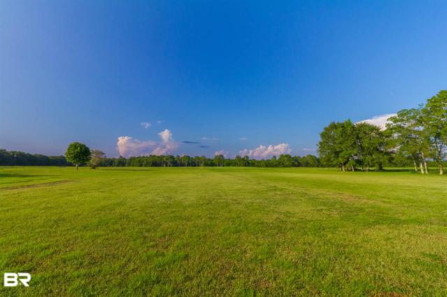 0 Carver Road, Foley, AL 36535 (MLS #278347) :: Elite Real Estate Solutions