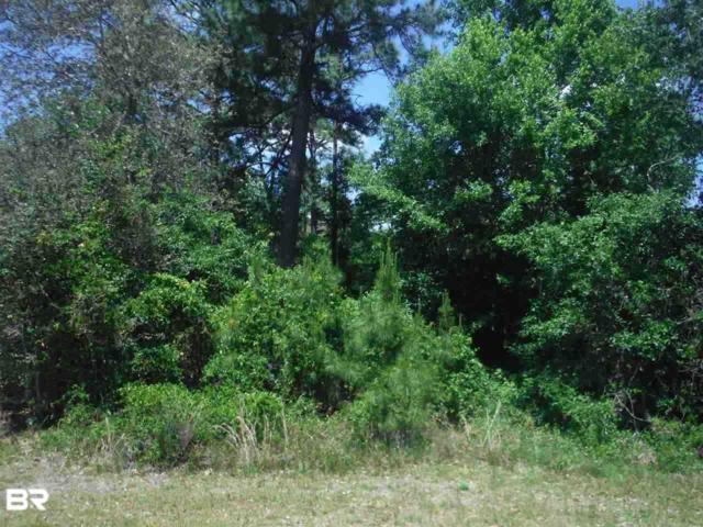 0 County Road 99, Lillian, AL 36549 (MLS #278650) :: Elite Real Estate Solutions