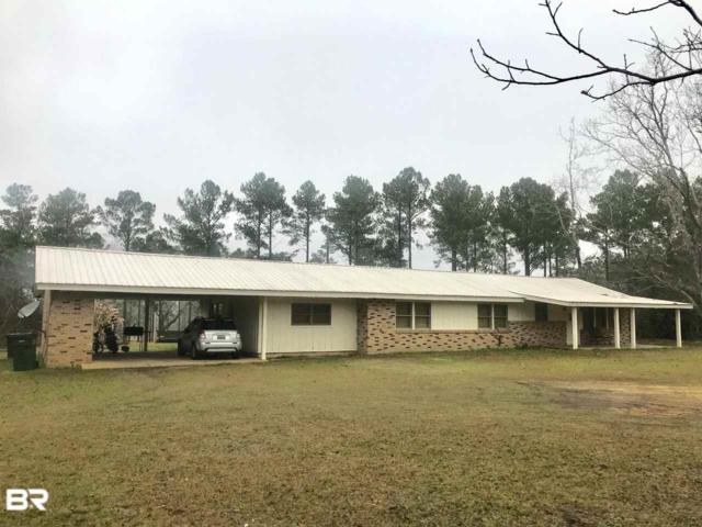 40933 Whitehouse Fork Road, Bay Minette, AL 36507 (MLS #278710) :: The Kim and Brian Team at RE/MAX Paradise