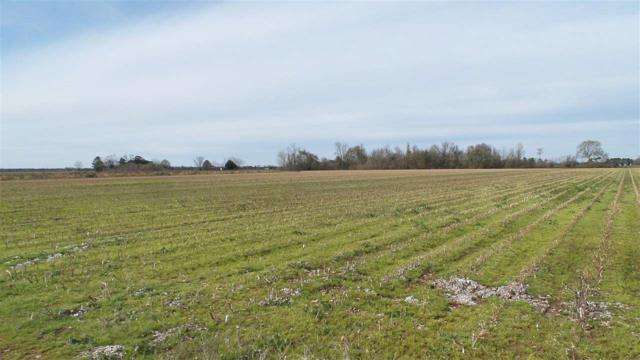 0 Davis Pond Rd, Atmore, AL 36502 (MLS #279048) :: Gulf Coast Experts Real Estate Team