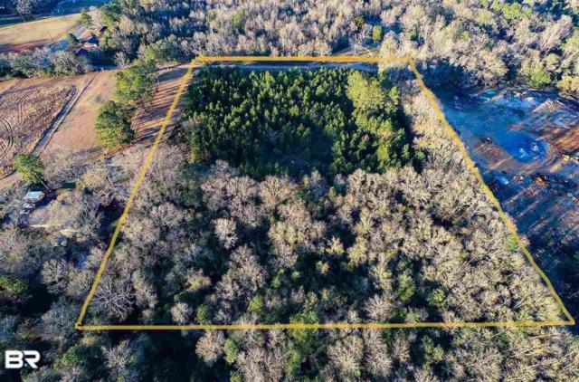 15600 Newport Pkwy, Bay Minette, AL 36507 (MLS #279108) :: Jason Will Real Estate