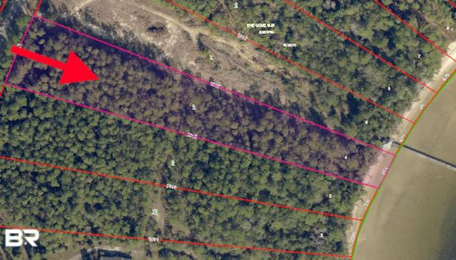 County Road 99, Lillian, AL 36549 (MLS #279407) :: Coldwell Banker Coastal Realty