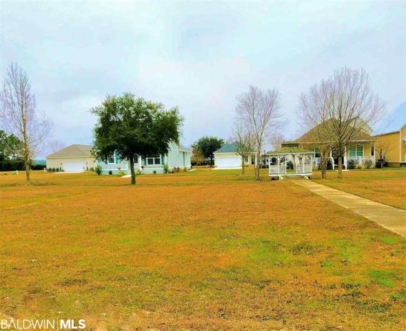 Lot 158 Pink Poppy Lane, Foley, AL 36535 (MLS #279503) :: ResortQuest Real Estate