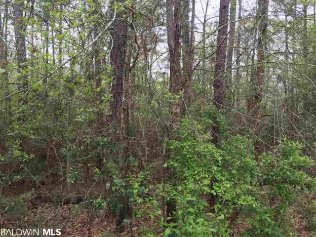 5251 Lossing Road, Coden, AL 36523 (MLS #279544) :: Jason Will Real Estate