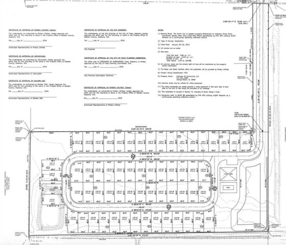 Creekside # 18 Miflin Rd, Foley, AL 36535 (MLS #279874) :: Elite Real Estate Solutions