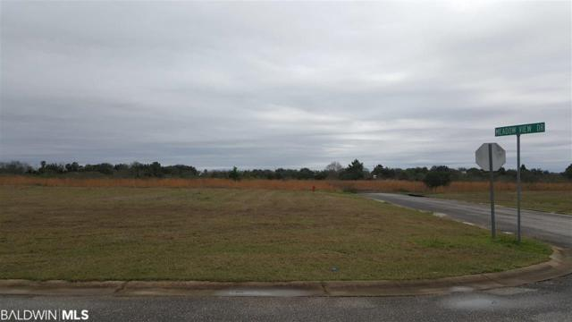 44 Cold Mill Lp, Foley, AL 36535 (MLS #280026) :: The Dodson Team