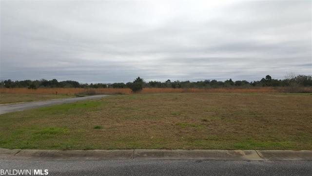 43 Cold Mill Lp, Foley, AL 36535 (MLS #280028) :: The Dodson Team